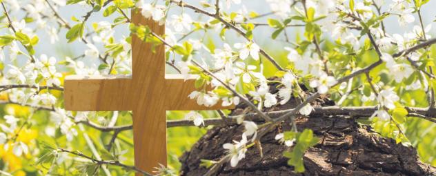 Auferstehung, Corona-Krise, Ostern, Hoffnung,