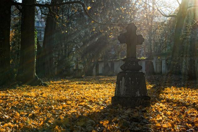Friedhof Ewigkeitssonntag, Herbst, Laub, Sonne