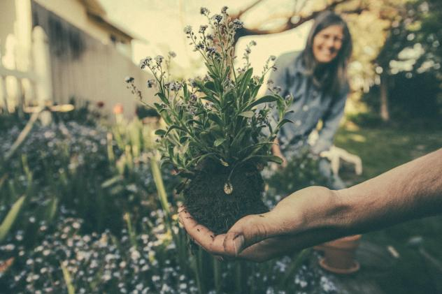 Gärtnern Corona Krise entspannen Hilfe