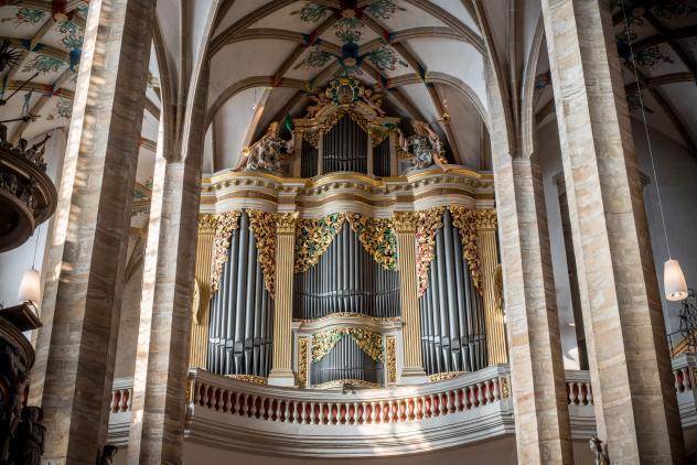 Freiberg Dom Orgel