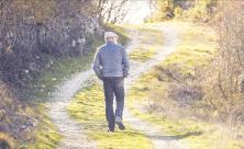 Besinnung, Wandern, Weg