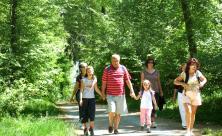 Tourismus Urlaub Inland Trend Wandern Heimat