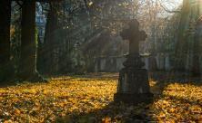 Friedhof Ewigkeitssonntag                     <div class=